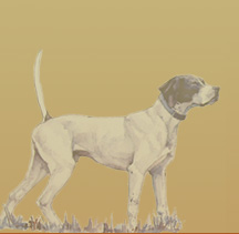 Watercolor of Pointer